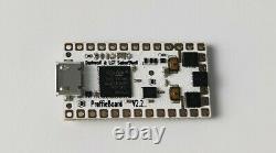 Custom DIY Neo pixel kit Proffie board v2.2 16GB SD Lightsaber Electronic Kit